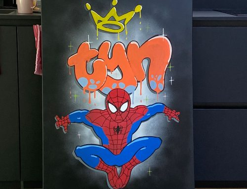 Spiderman canvas voor Tijn